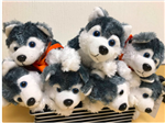 stuffed dogs